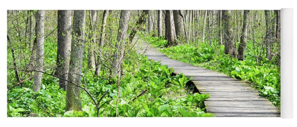 Indiana Dunes Great Green Marsh Boardwalk Yoga Mat