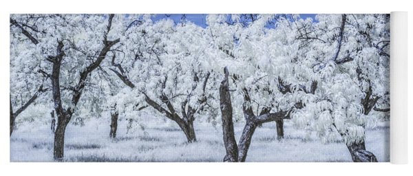 Infrared  Photograph Of A Cherry Orchard Yoga Mat