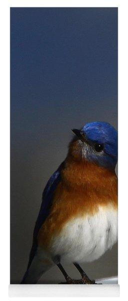 Inquisitive Bluebird Yoga Mat