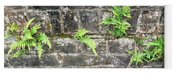 Intrepid Ferns Yoga Mat