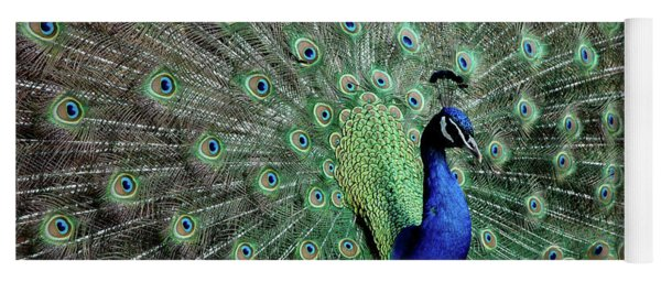 Iridescent Blue-green Peacock Yoga Mat
