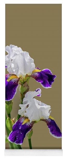 Iris Germanica In Purple And White Yoga Mat