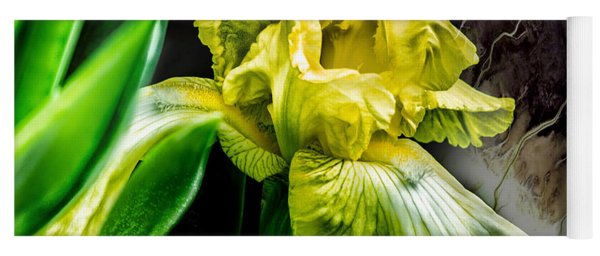 Yoga Mat featuring the photograph Iris In Bloom Two by Richard Ricci