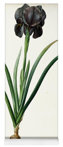 Iris Luxiana Yoga Mat