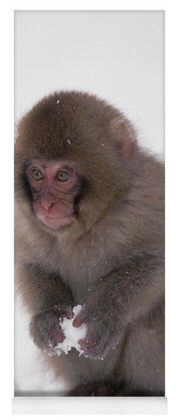 Japanese Macaque Macaca Fuscata Baby Yoga Mat