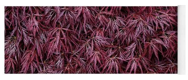 Japanese Maple Garnet Yoga Mat