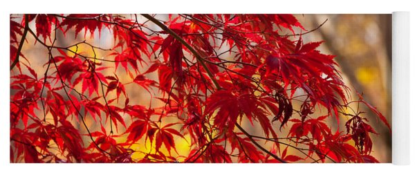 Japanese Maples Yoga Mat