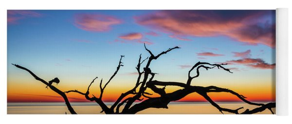 Jekyll Island Sunrise On Driftwood Beach Yoga Mat