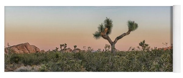 Yoga Mat featuring the photograph Joshua Tree Evening by Alison Frank