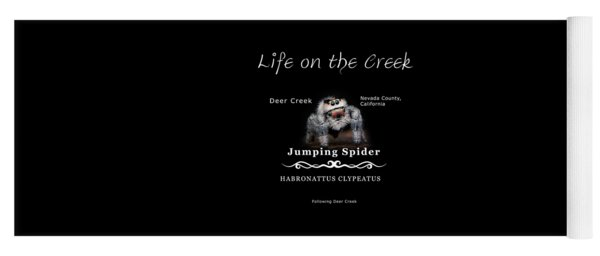 Jumping Spider Yoga Mat