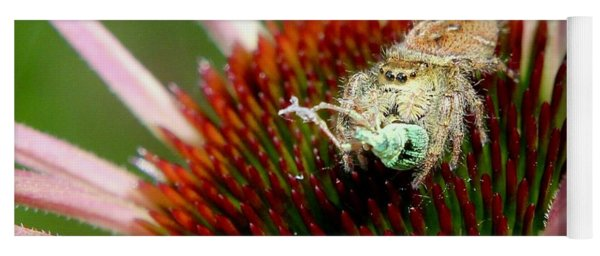 Jumping Spider With Green Weevil Snack Yoga Mat