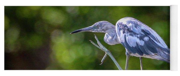 Juvenile Little Blue Heron Yoga Mat