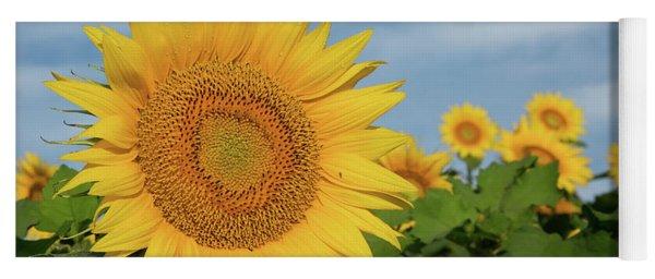 Kansas Sunflower Yoga Mat