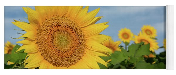 Kansas Sunflower Yoga Mat