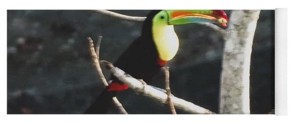Keel-billed Toucan Yoga Mat