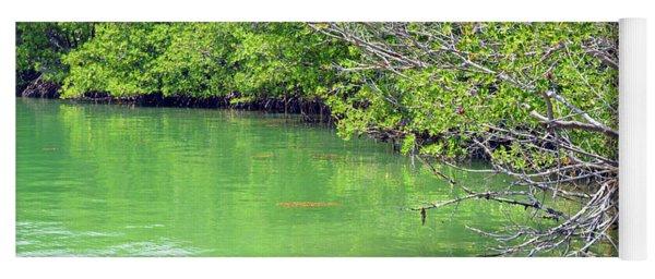 Key Biscayne Mangroves Yoga Mat