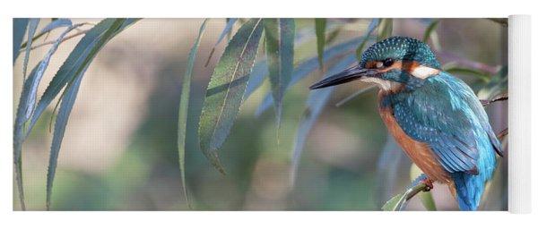 Kingfisher In Willow Yoga Mat