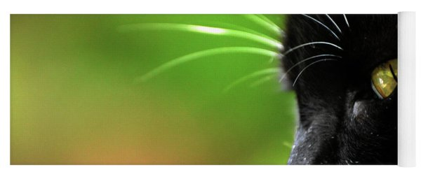 Kitkat Profile By Lesa Fine Yoga Mat