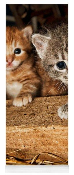 Kittens Yoga Mat