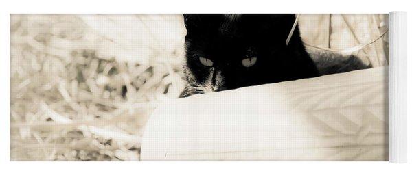 Kitty Stalks In Sepia Yoga Mat