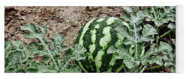 Ky Watermelon Yoga Mat