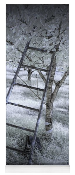 Ladder In A Cherry Orchard In Infrared Yoga Mat