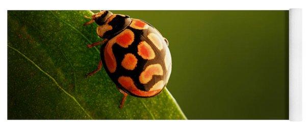 Ladybug  On Green Leaf Yoga Mat