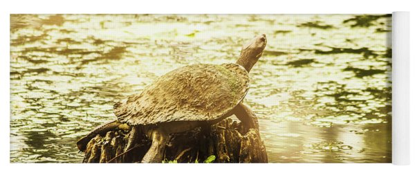 Lake Turtles Yoga Mat