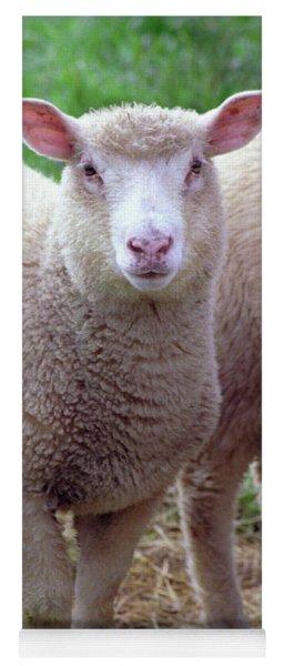 Lamb Yoga Mat