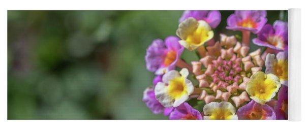 Lantana In Bloom Yoga Mat