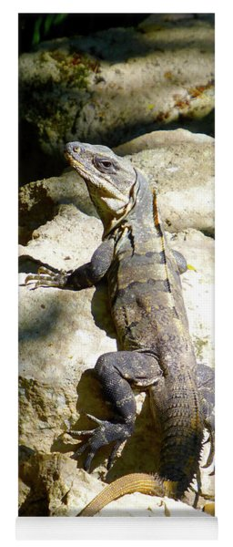 Large Lizard M Yoga Mat