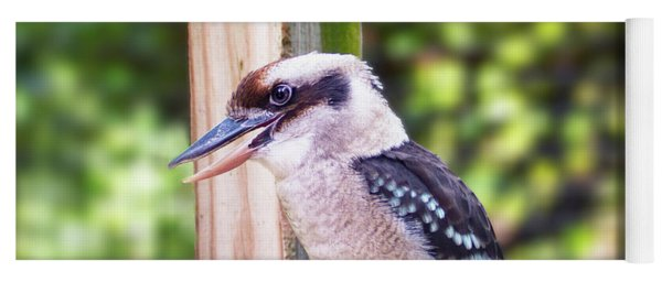 Laughing Kookaburra Yoga Mat