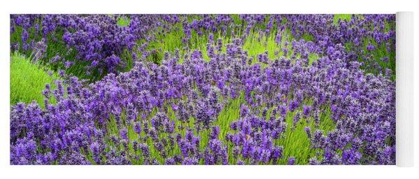 Lavender In Blooming Yoga Mat