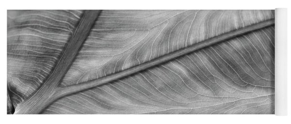 Leaf Abstraction Yoga Mat