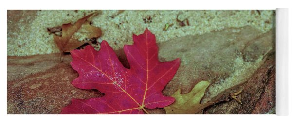 Leaf In Sand Yoga Mat