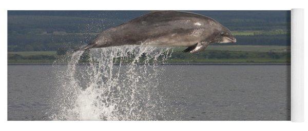 Yoga Mat featuring the photograph Leaping Bottlenose Dolphin  - Scotland #39 by Karen Van Der Zijden