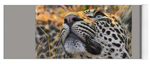 Leopard Aloft Yoga Mat