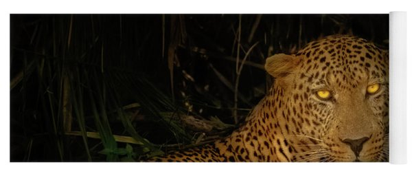 Leopard Hiding Yoga Mat