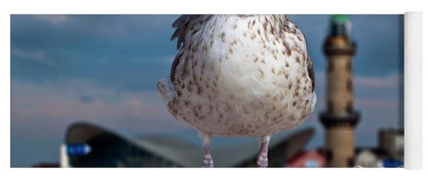 Liberty Of An Pacific Gull Yoga Mat