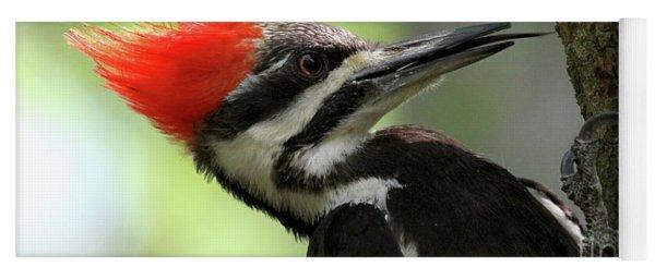 Lick It Up - Pileated Woodpecker Yoga Mat