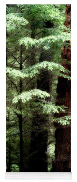 Light On Trees Yoga Mat