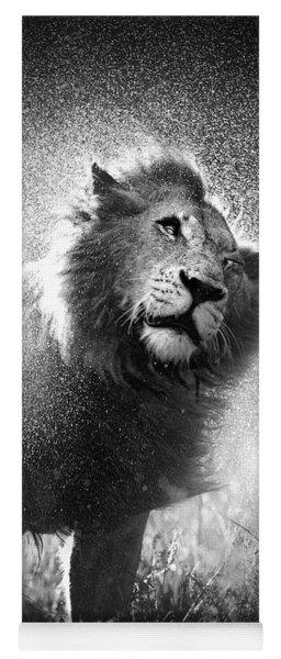 Lion Shaking Off Water Yoga Mat