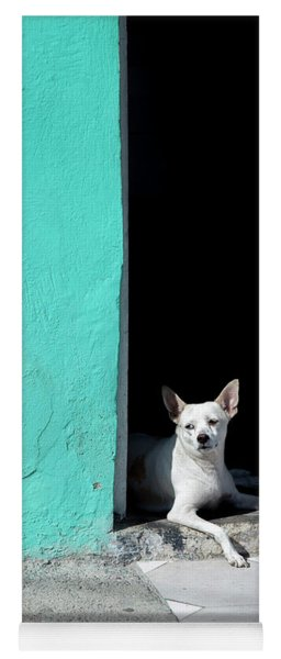 Little Dog In Doorway Havana Cuba Yoga Mat