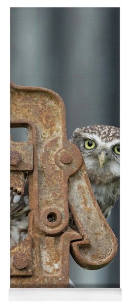 Little Owl Peeking Yoga Mat