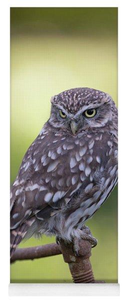 Little Owl Pipe Bender Yoga Mat