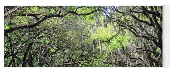 Live Oak Canopy Yoga Mat