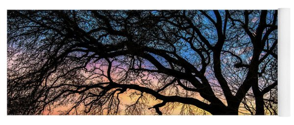 Live Oak Under A Rainbow Sky Yoga Mat