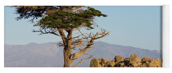 Lone Cypress Tree  Yoga Mat