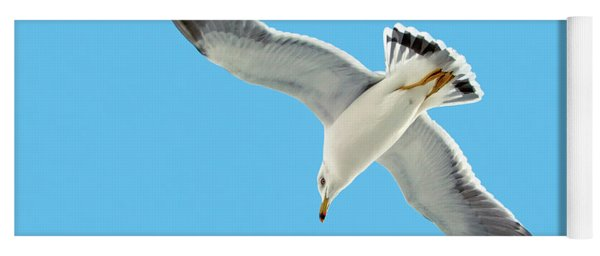 Lone Florida Seagull On Beach Patrol 727b Yoga Mat