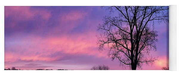 Lone Tree At Dawn Yoga Mat